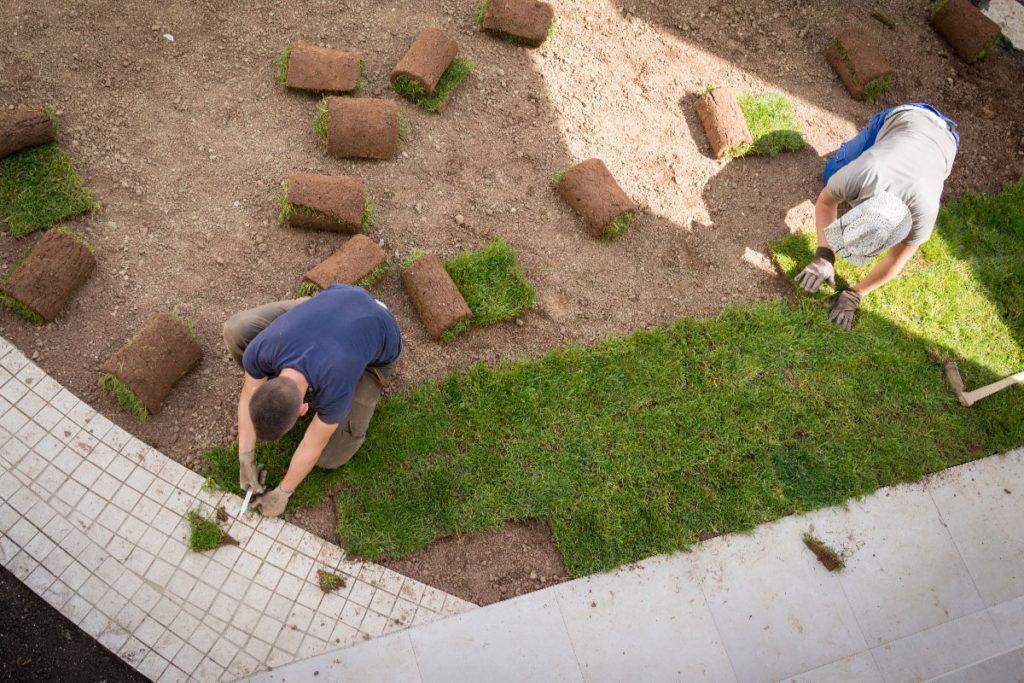 man installing grass